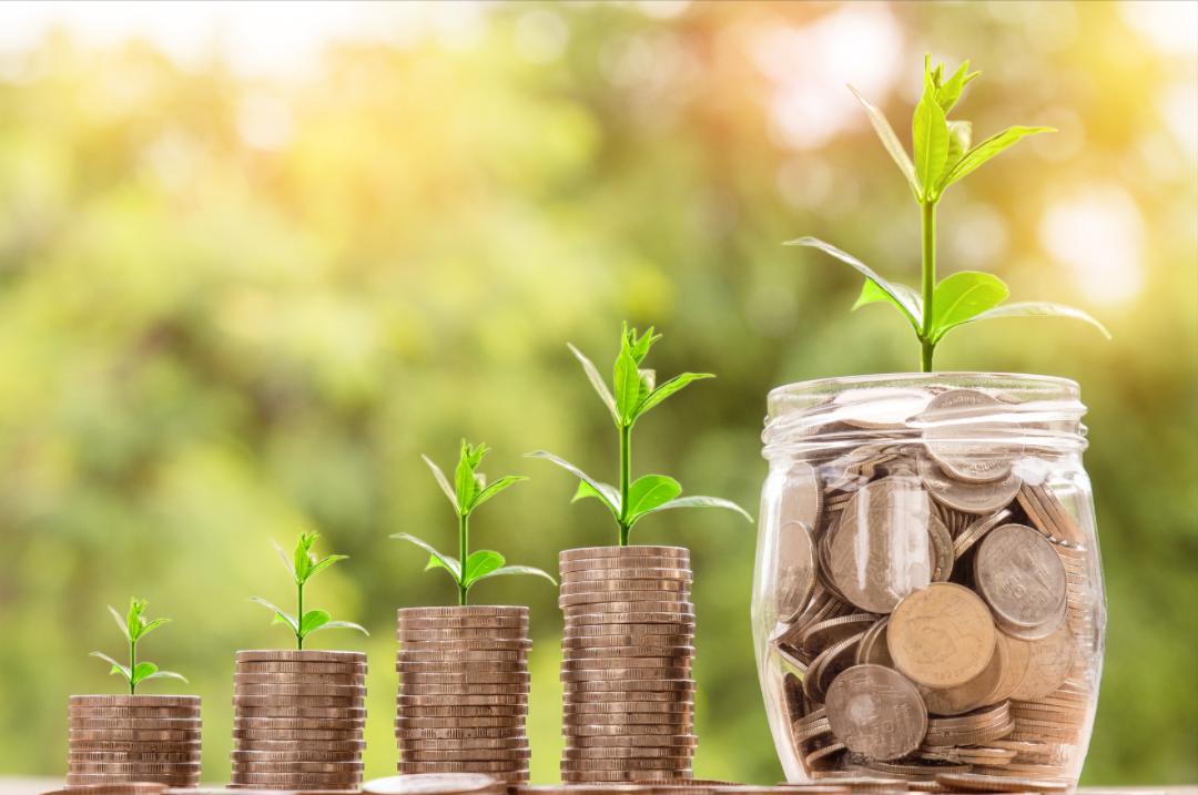 Money growth saving stock image